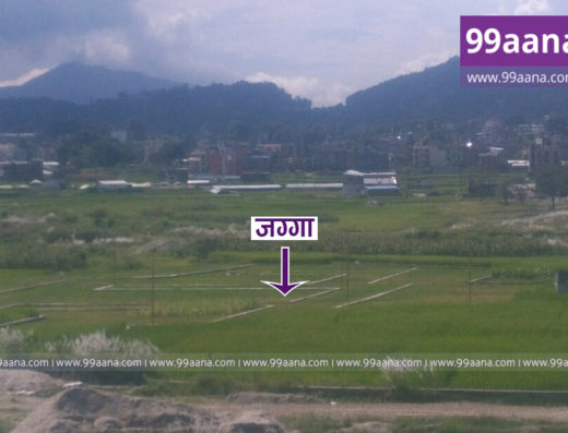 Land for sale at Nayapati, Gokarneshwor