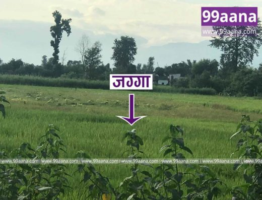 land for sale at Lamki, Kailali