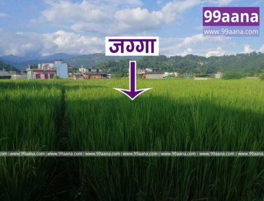 Land for sale at Begnas Tal, Pokhara Lekhnath