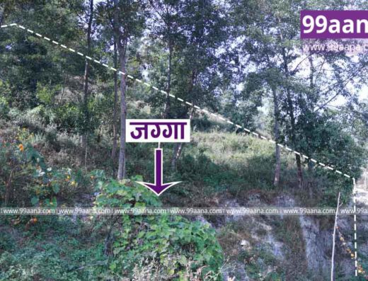 Land for sale at Suntakhan Gokarneshwor