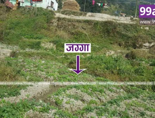 land for sale at sankhu