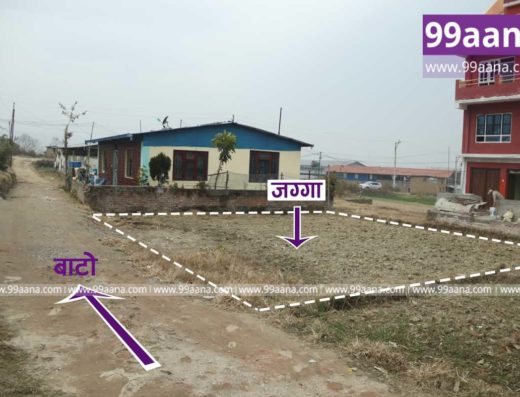 Land for sale at dadhikot