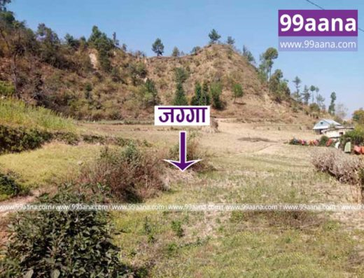 land for sale at dukuchhap - 3178