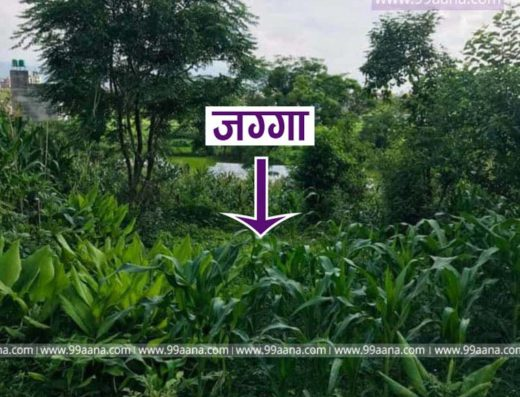 Land for sale at Balkot, Sirutar, Bhaktapur