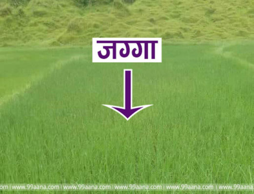 Land for sale at Pokhara, Kaski