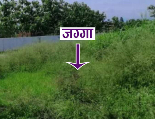 Land for sale at Ratnanagar, Chitwan