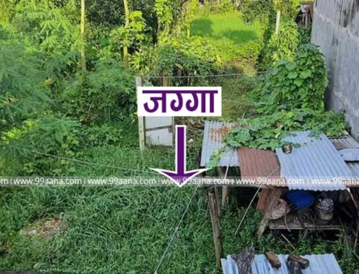 Land for sale at Aadarsh Tole, Khairahani-01, Chitwan