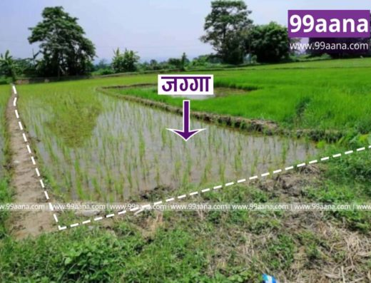 Land for sale at Khairahani-10, Chitwan