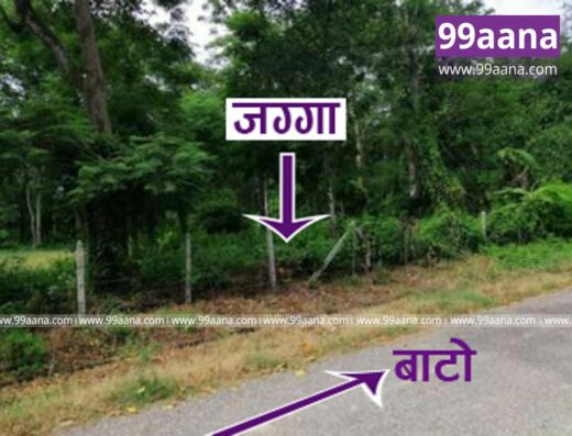 Land for sale at Sauraha, Chitwan