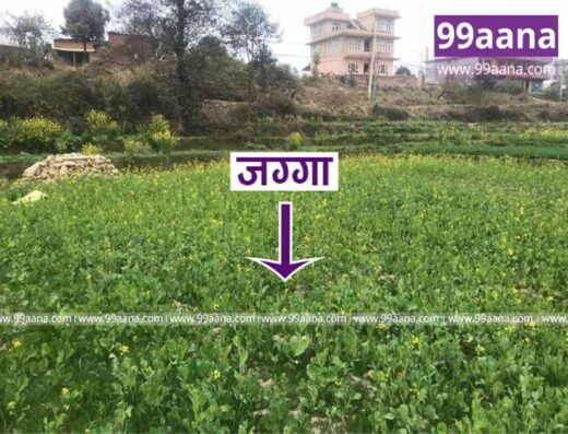 Land for sale at Dadhikot, Bhaktapur