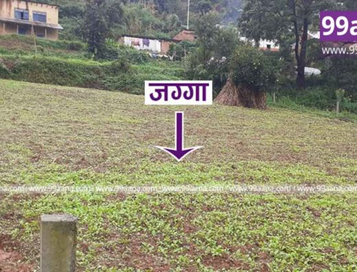 Land for sale at Chhampi, Lalitpur