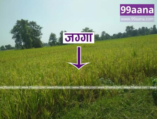 Land for sale at Jhil Bazar, Chaumala, Kailali