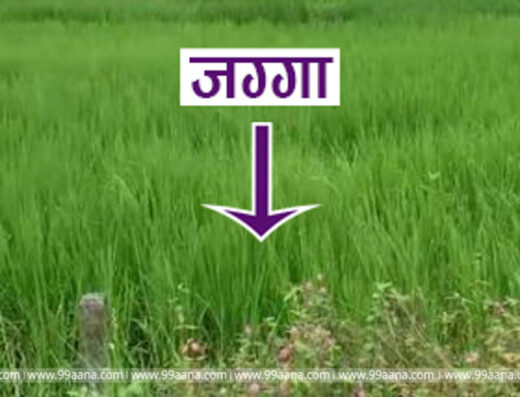 Land for sale at Dhulabari, Mechinagar-10, Jhapa