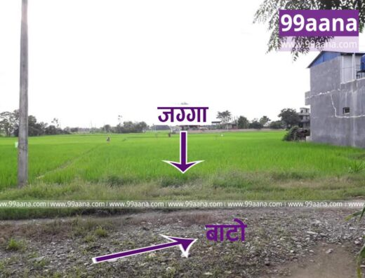 Land for sale at Gaurigunj, Bharatpur-08, Chitwan