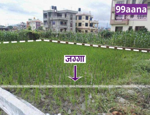 Land for sale at Balkot, Bhaktapur